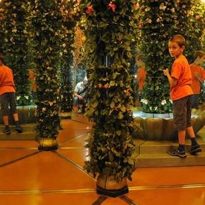 Spiegellabyrinth Gletschergarten Luzern