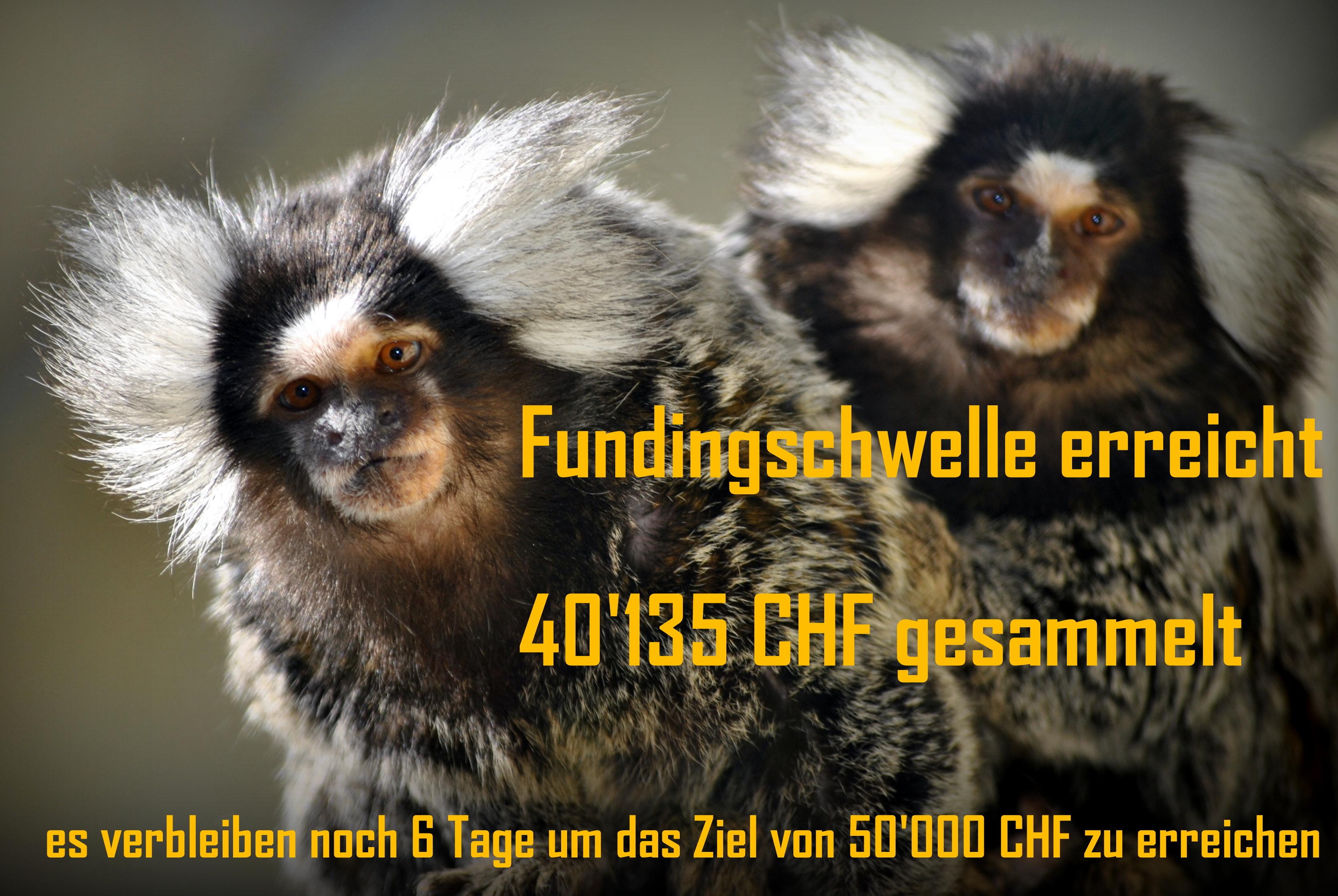 Fundingschwelle_erreicht.JPG